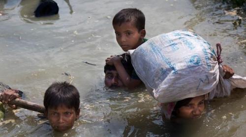 Myanmar Bunuh Lebih 3 Ribu Muslim Rohingya dalam 2 Pekan Terakhir