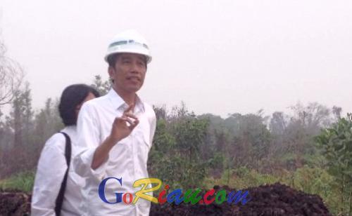 Pernah Gagal Berkali-kali, Jokowi Kembali Dijadwalkan Berkunjung ke Riau