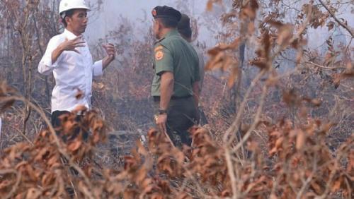 Kebakaran Hutan Kembali Terjadi, Jokowi Ingatkan Panglima TNI dan Kapolri Laksanakan Perintahnya