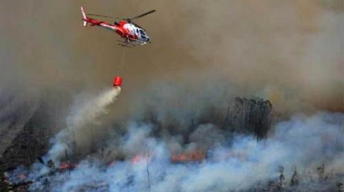 30 Hektare Lahan di Rohil Terbakar, Luasan Terus Bertambah