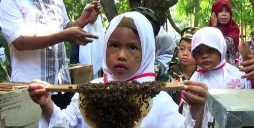 Wah Beraninya... Lihat Nih, Puluhan Bocah Diajari Menjinakkan Lebah