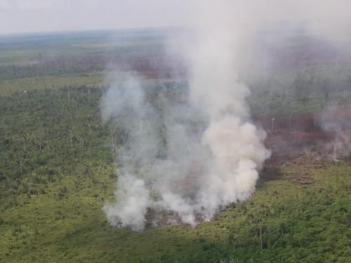 Hari Ini Riau Dikepung 40 Hotspot, Paling Banyak di Kabupaten Bengkalis