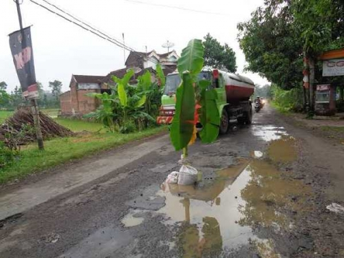 Walikota Pekanbaru Minta Warga Bergotong - royong Perbaiki Jalan Berlubang