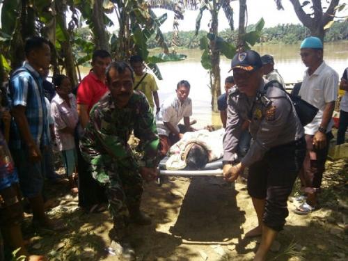 Tragis,, Selamatkan Peralatan Dapur saat Banjir, Ayah dan Anak di Inhu Tewas Tenggelam di Kanal Perusahaan