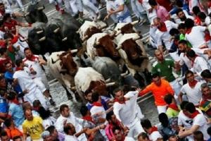 Festival Dikejar Banteng Telan Korban Jiwa dan Lukai Belasan Orang