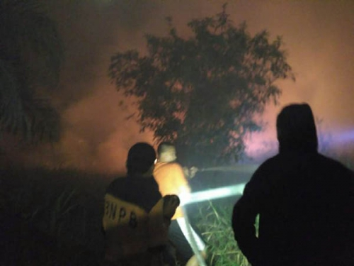 Tak Ada Jalan, Petugas Kesulitan Padamkan Kebakaran Lahan di Desa Batang Nilo Kecil
