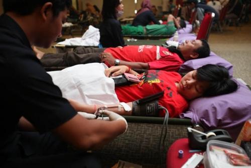 RAPP Gelar Donor Darah ke-44, 52 Karyawan Terima Penghargaan PMI Riau
