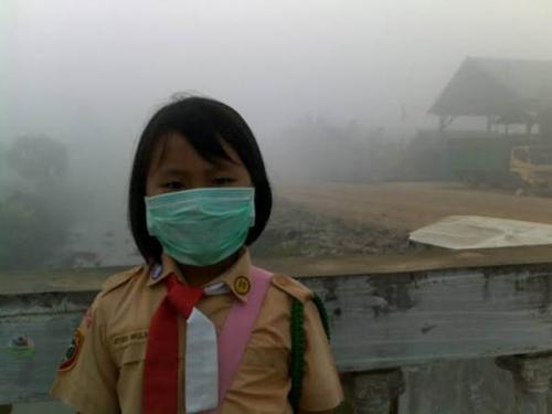Seluruh Perusahaan Harus Sediakan Posko Pengungsian dan Air Bersih untuk Warga Selama Kabut Asap