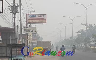 Asap Pekat, Jarak Pandang di Pekanbaru dan Inhu Hanya 300 Meter, Pelalawan 200 Meter