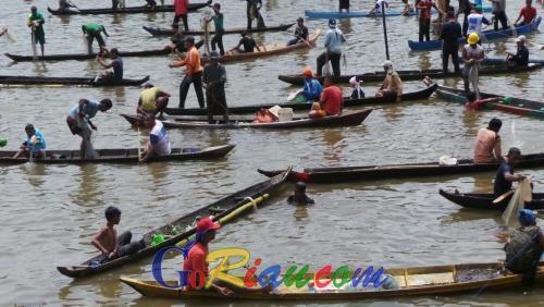 10.000 Orang Kampar Ikut Mengepung Ikan di Danau Bakuok Desa Aur Sati