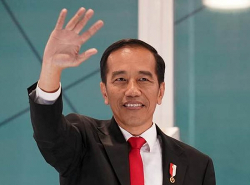 Ini 6 Pertimbangan LAM Riau Berikan Gelar Adat untuk Presiden Joko Widodo
