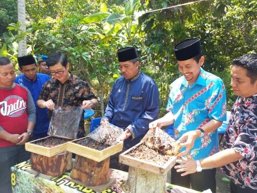 Budidaya Madu Kelulut di Siak Masuk Paket Wisata Musim Durian
