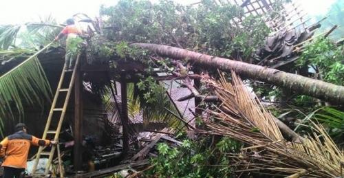Puting Beliung Berpotensi Terjang Seluruh Wilayah Indonesia, Masyarakat Diimbau Bersiaga