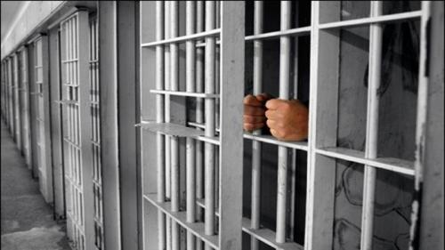 Baru 3 Hari Ditahan, Direktur PT DSI Dibebaskan Kejari Siak