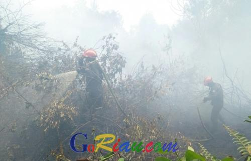 Sudah Seminggu Padamkan Kebakaran di Lahan Warga, 170 Anggota TRC Sinar Mas Rela Tak Pulang Jumpa Keluarga