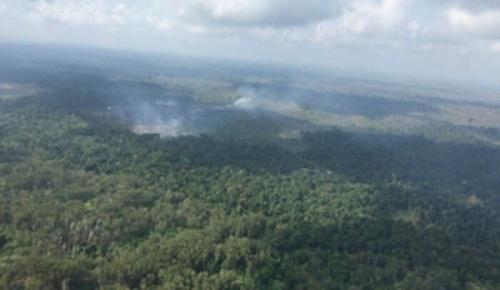 TNTN Riau Masih Produksi Asap, Ini Tindakan yang akan Diambil KLHK