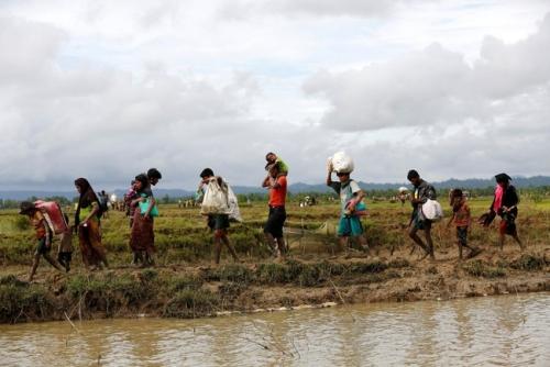 Memilukan, Pengungsi Muslim Rohingya Ricuh Berebut Makanan
