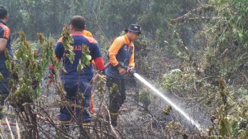 Kebakaran Dua Hektare Lahan di Jalan Gulama Pekanbaru Nyaris Hanguskan Rumah
