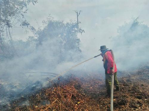 MPA Jadi Garda Terdepan Padamkan Api Karhutla di Riau, Walau Tak Digaji dan Sering Tinggalkan Keluarga
