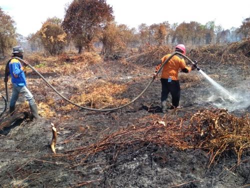 Ekonomi Kreatif untuk MPA di Riau Jadi Mandiri