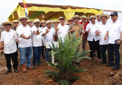 745 Ha Kelapa Sawit PTPN V Tanam Perdana