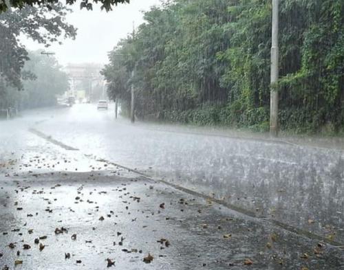 Hari Ini Hujan Bersifat Lokal Terjadi di 7 Kabupaten di Riau