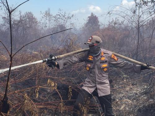 16 Hari Memasuki Tahun 2020, Polda Riau Tangkap Sembilan Orang Pembakar 79,515 Hektare Hutan dan Lahan di Riau