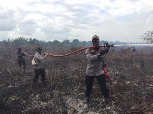 16 Hari Memasuki Tahun 2020, Polda Riau Tangkap 9 Pembakar 79,515 Hektare Hutan dan Lahan