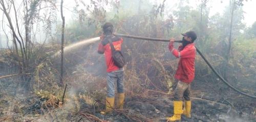 Bersama TNI, Polri dan BPBD, Fire Fighter PT SRL Berjibaku Padamkan Api