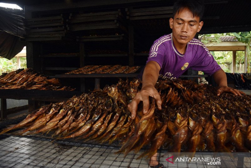 Saat Pandemi, Permintaan Ikan dari Kampar Ini Meningkat, Bahkan dari Luar Negeri