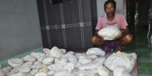 Nelayan di Bengkulu Mendadak Kaya Gara-gara Temukan Muntahan Ikan Paus, Sudah Ada yang Tawar Rp3,3 Miliar