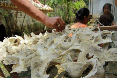 Spesialis Pencuri Sarang Burung Walet dari Pekanbaru Ditangkap Polsek Mandau