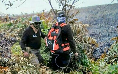 Kondisi Terkini Karhutla Areal PT TUM dan Lahan Masyarakat di Kuala Kampar