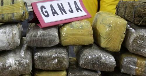 Coba Selundupkan 22 Kilo Ganja Aceh ke Riau, Dua ABG Ditangkap