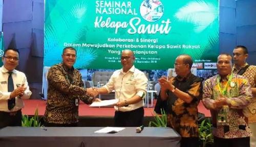 Dalam Satu Dekade, Sawit Indonesia Meningkat dari 1,1 Juta Ha Menjadi 14,03 Juta Ha