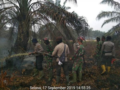 3 Tim Satgas Karhutla Padamkan Api di Rantau Panjang Rohil