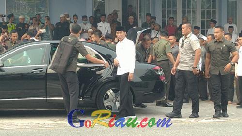 Presiden Jokowi Melakukan Peninjauan Lokasi Karhutla ke Bunut Pelalawan
