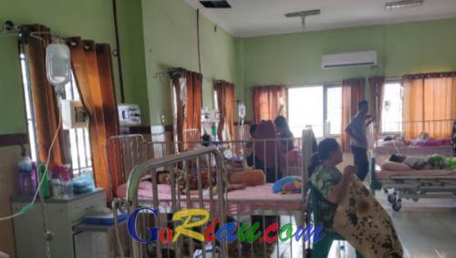 Demam Berdarah Ancam Rohil, Pasien Didominasi Anak-anak
