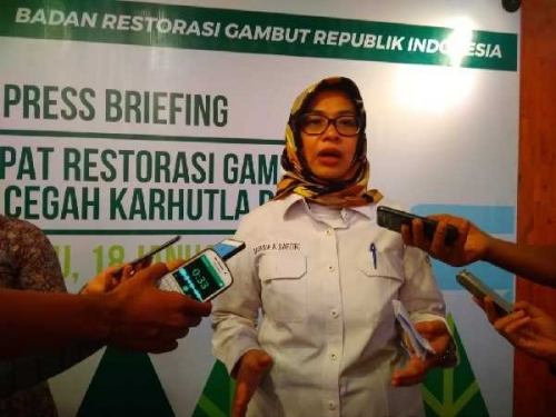 Dimulai Januari 2019, BRG akan Lakukan Supervisi dan Asistensi Restorasi 814 Ribu Hektar Lahan Gambut di Riau