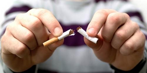 Para Perokok Wajib Baca... Ini Makanan yang Ampuh Keluarkan Nikotin dari Tubuh Anda
