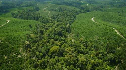 DPRD Riau Minta Pembangunan Transmisi Listrik dan Gardu Induk Tetap Dilanjutkan