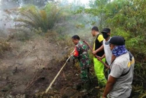 Lahan Empat Petani di Dumai Terbakar