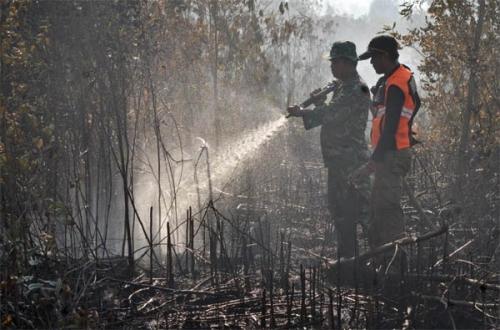 Tim Gabungan Lakukan Pendinginan Pasca Kebakaran Lahan di Bangsal Aceh