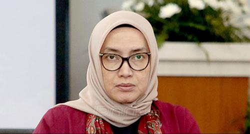 Komisioner KPU RI Evi Novida Dipecat, Ini Kesalahannya Menurut DKPP