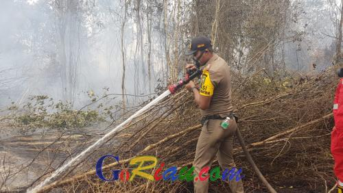 Satpol PP Riau Ikut Padamkan Api di Rimbo Panjang Kampar: Ini Bentuk Kemanusiaan