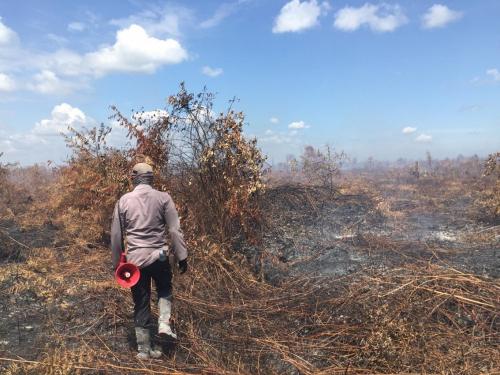 Per 17 Januari 2020, Lahan Terbakar Paling Banyak di Kabupaten Bengkalis dan Siak Riau