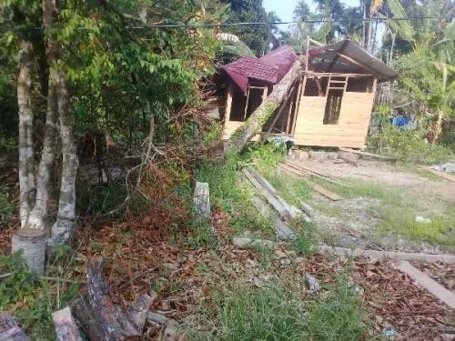 Ditimpa Pohon Durian, Rumah Warga Dedap Tasik Putripuyu Roboh