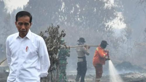 Masih Dianaktirikan, Dewan: Jokowi Jangan Hanya Berkunjung Saja, Lihatlah Kondisi dan Apa yang Dibutuhkan Riau