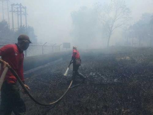 30 Hektare Lahan PT TSM Terbakar di Indragiri Hulu