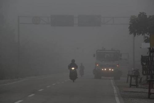Wah, Hasil Riset Harvard dan Columbia Sebut Ada 100.300 Kematian Akibat Kebakaran Hutan dan Lahan Tahun 2015